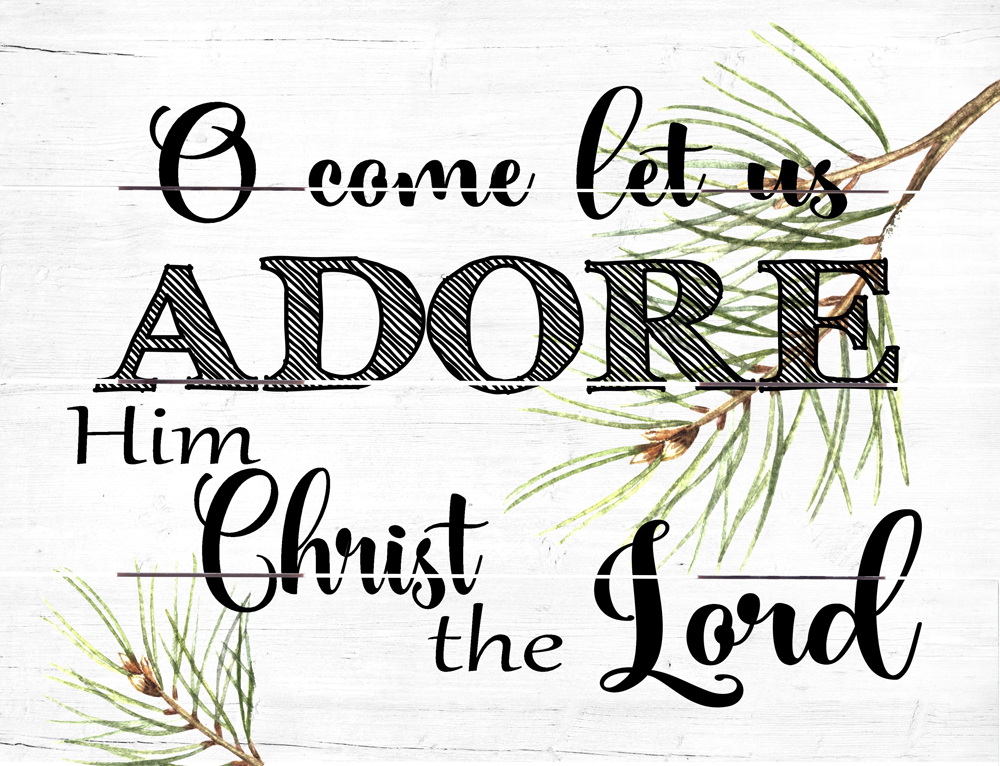 Image result for o come let us adore him christ the lord